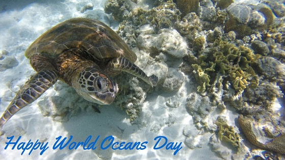 world oceans day title