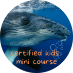 kids humpback course